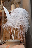 White feathers held in rolled ribbon