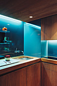 Kitchen made from exotic wood with illuminated back wall
