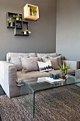 Cushions on pale grey couch, glass coffee table and houseplants on wall-mounted shelves