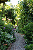 Narrow path lines by densely planted borders in garden