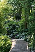 Small wooden bridge in garden
