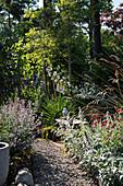 Schmaler, bewachsener Kiesweg im Garten