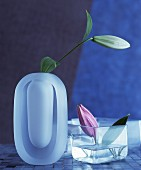 Lily buds in square and oval vases made from matt and clear glass