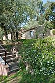 Steps in wild garden leading to Mediterranean stone house