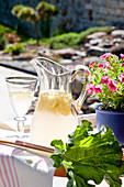 Carafe and glass of lemonade next to rhubarb leaf on table