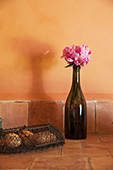 Peony in bottle on terracotta floor tiles