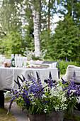 Strauß mit blauen Lupinen vor dem gedeckten Tisch im Garten