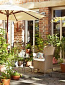 Various potted plants and parasol on comfortable terrace