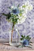Weißer Blütenzweig und Distelblüte in Glasvase