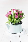 Pink and white tulips in kettle