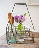 Hyacinths and wooden spoons in glass bottles in vintage bottle carrier