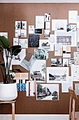 Pin board with architectural photographs and color samples