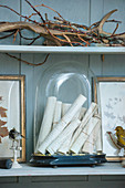 Old scrolls under glass cover and collectors items on shelves