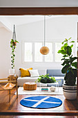 Bright living room with a large houseplant, round carpet, and upholstered sofa