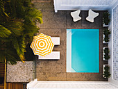 Top view of pool, chairs, loungers with parasols and palm trees