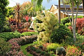 Lush and colorful garden with exotic plants