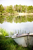 Rowing boat on shore of lake in summer