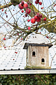 Bird nesting box with snow on roof hanging from tree amongst red crab apples