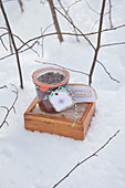 Preserving jar with home-made label and wooden box in snow