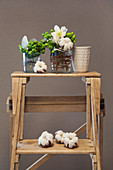 Posies in vases and cotton bolls on ladder