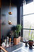 Wire baskets and golden hanging bowls in kitchen with black wall