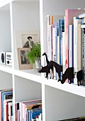 Various animal sihouettes made from black cardboard between books on white bookcase