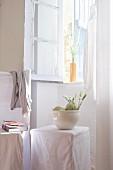 weiße Schale mit Melonen und Blüten auf Hussen-Hocker unter geöffneter Fenster