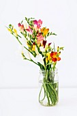 Colourful freesias in glass jar against white background