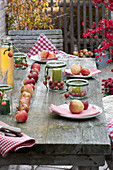Rural table decoration with Malus (apple) in row