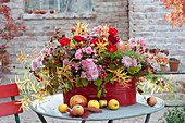 Autumn arrangement in red tin pot