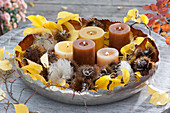 Broad bowl with candles, fruit stalks of Castanea sativa