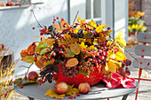 Autumn arrangement of twigs of Amelanchier, Celastrus