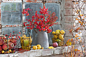 Autumn fruits on the stable window, bouquet from Euonymus europaeus