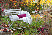 Bench with pillows and blanket under malus (ornamental apple tree)