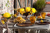 Autumn table decoration in sun yellow, Chrysanthemum grandiflorum