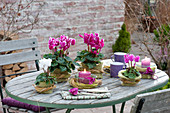 Autumn table decoration with cyclamen with felt cover and grass wreaths