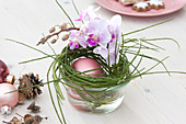 Christmas table decoration with Moth orchids