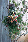 Making stars out of colorful dogwood branches