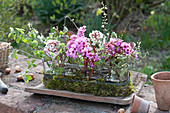 Spring arrangement in glass jardiniere with moss and Bergenia blossoms
