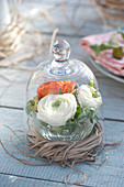 Glass bowl with ranunculus flowers in wreath of grass