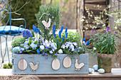 Rosemary stems, muscari, viola