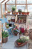 Early spring in the greenhouse