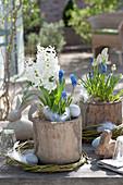 Hyacinthus 'White Pearl', and Muscari
