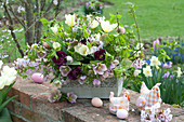 Easter arrangement in metal box on garden wall, Tulipa