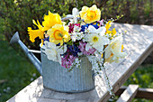 Colorful spring bouquet in Zinc Watering Can Narcissus, Spiraea