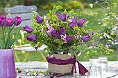 Tulipa 'Purple Prince' ( Tulpen ), Zweige von Carpinus ( Hainbuche )