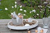 Muscari alsoeri 'White Magic' (grape hyacinth) with onions