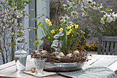 Silver bowl with narcissus, easter bunny and easter eggs