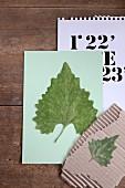 Gepresste Blätter auf einem Stück Karton und einem Papier
