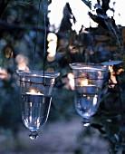 Windlichthalter aus Glas am Baum aufgehängt
